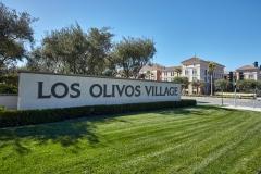 1_LosOlivos-01